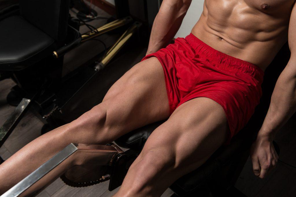 meilleurs exercices jambes
