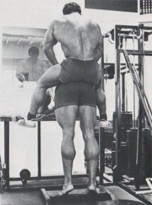 arnold mollets musculation